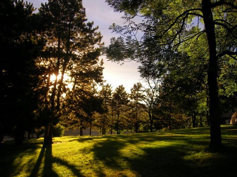 Un parc de 15 ha
